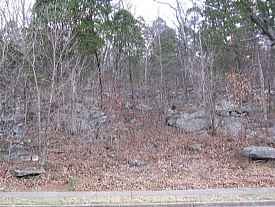 Sloped, wooded, rocky lot